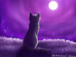 Purple Night by SilverMoonNightMist