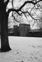 Gate House in Winter by EarthHart