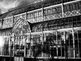 Glass House by stregatta75
