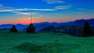 From Bukovina by lica20