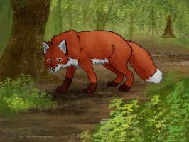 Fox in the Woods by Joava