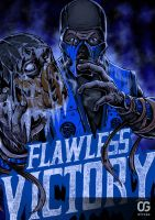 Sub-Zero: FLAWLESS VICTORY by Bakerrrr