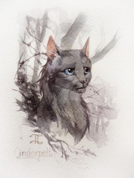 Cinderpelt by Flame-of-inspiration