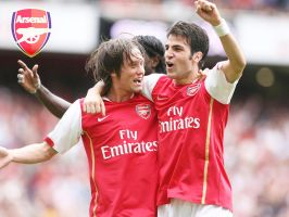 Cesc and Rosicky Arsenal by littlemiitha