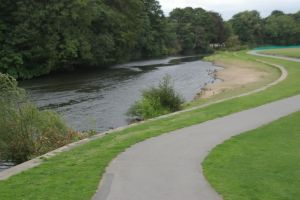 Ducks by the river Aire at Saltaire by rainbowphotos
