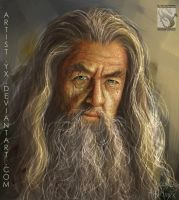 Gandalf - Lord of the RIngs - Study #8 by artistmyx