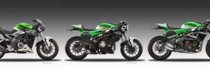 BENELLI KAFE' FIGHTER CONCEPTS FAMILY by obiboi
