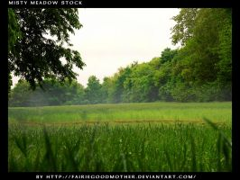 Misty Meadow Stock 2 by FairieGoodMother