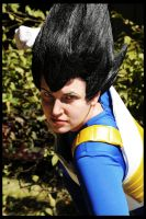 Saiyajin Prince Vegeta by Honeyeater