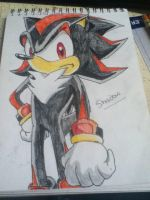 Shadow the Hedgehog by sonic-chic1