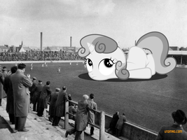 Dundee Invasion: Soccer Interrupted by SomeRandomMinion