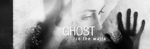 'Ghost' Banner by fiction-saviour