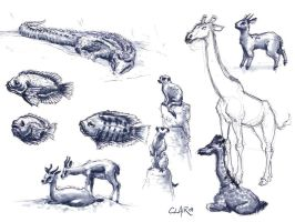 SD Zoo Sketchin Sep-09 2 by mighty5cent