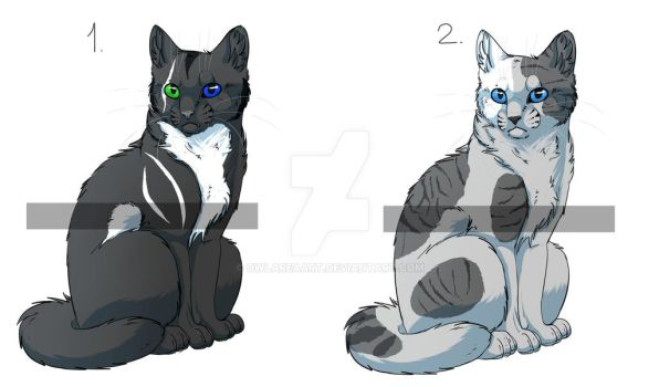 Auction adopts for points! by OwlAreaART
