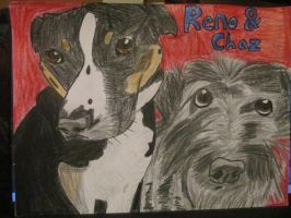 Reno and Chaz by SeraphinaPitchiner