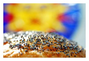 Sunshine and Poppy Seeds by angelbabiau