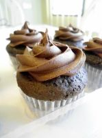 Chocolate Cupcakes by PnJLover