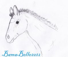 Jess's Dream by BamaBelle2012