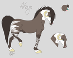 Akayo Ref by Irish-Filly