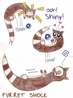 Furret Shock by endigogh