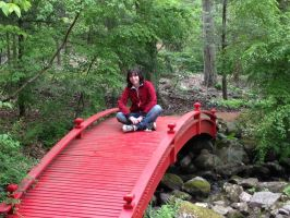 Sitting On The Little Red Bridge by DemonShadowz