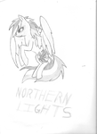 Northern Lights by HeroofTime2195