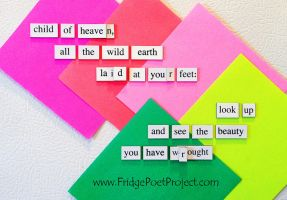 The Daily Magnet #299 by FridgePoetProject