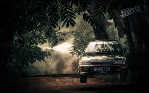 DiRt2 by Dynnnad