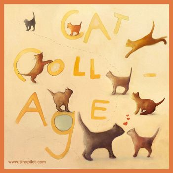 Cat Collage by TinyPilot