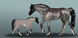 Sport Horse Import BEC 3 by life-d-sign