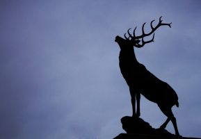 Stag silhouette by mant01