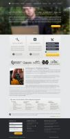 Web Design: Online College Directory by ab6421