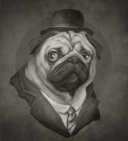 Hobo Pug by juhoham