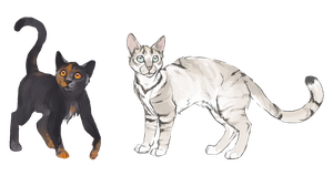 Some personal cat characters by QuietLittleLeaf