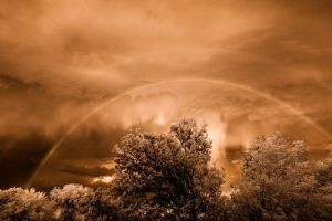 downpour, IR by robpolder