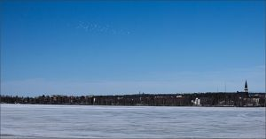 White birds over the frozen water by NikolaiMalykh