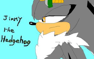 Jimmy The Hedgehog by drakughost