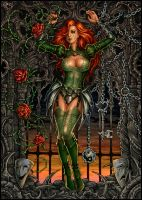 Dawn in roses by Candra