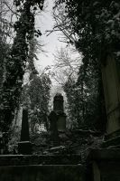 Highgate Cemetery 02 by Arctictouch