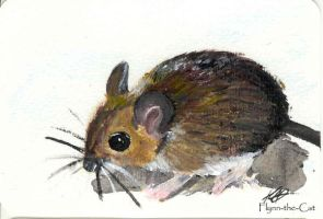 Postcard Fieldmouse by Flynn-the-cat
