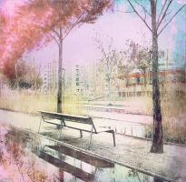 bench by Amalus