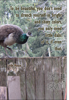 Peahen: To Be Beautiful by WhiskerfaceRumpel
