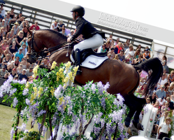 Show Jumping 83 by JullelinPhotography