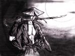 Moonlit Samurai Series 2 by momoe