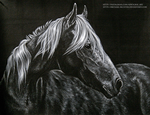 + Airbrushing - Horse + by Michael-Richter