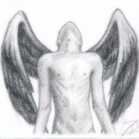 Male Angel by SatinRose
