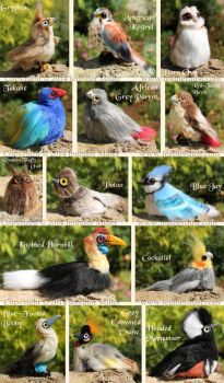 Bird Critters, June Batch by Nambroth