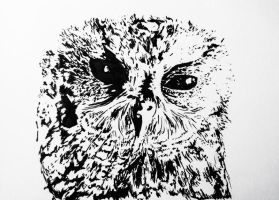Little blind owl made with ink by ART-BY-YO