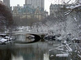 Winter in Central Park by metrogirls