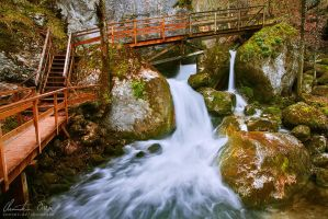 Myra Falls 9 by Nightline